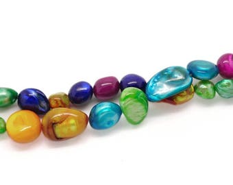 A set of 12 assorted color shell beads.