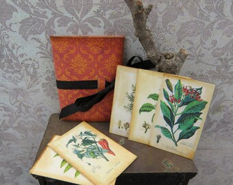 Spices botanical plates with folder in 1:12 scale