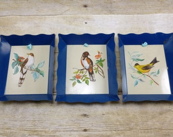 Bird Tray Pictures