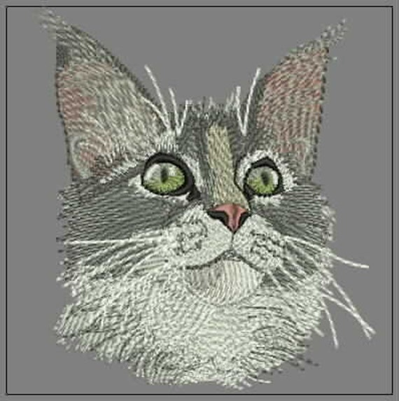 Maine Coon Cat Embroidery Design Design For Embroidery