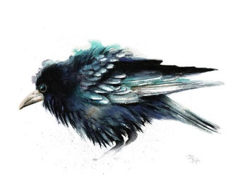 Crow watercolor painting - Archival print. Nature or Bird Illustration, Crow, Raven