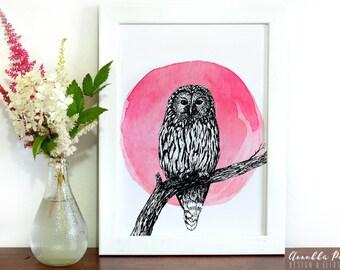 Ural owl, print A4
