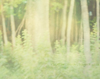 Green Heart II Fine Art Photographic Print 16x24 Abstract Forest Trees Woods Nature Woodland