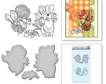 Spellbinders   Bunny Stamp and Die Set from the Spring Love Collection by Stephanie Low SDS-063