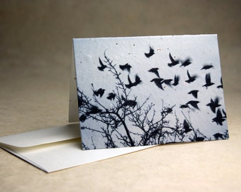 Seed Paper Birds Print Recycled Cotton Blank Notecard Set - Northwest Photography
