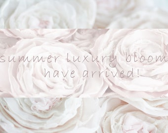 Preview! Luxury Summer Rose Bloom Cashmere Collection Have Arrived - Peach Blossom Pink Rose Pins
