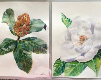 Magnolia. Flower and fruit. Diptych
