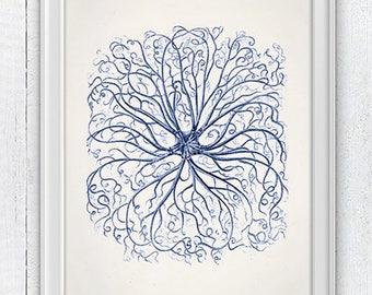 Blue Euryale Starfish  Antique sealife Illustration - Beach house wall decor, Sea life illustration in blue, SAS304
