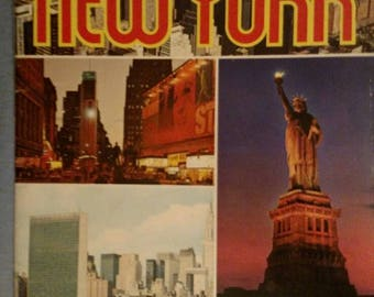 Beautiful vintage New York guidebook 1970's, full color. Excellent used vintage condition