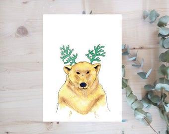 Print - Bear - animal - Limited Edition series