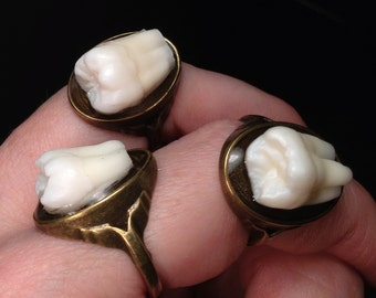 LAST ONE - Tooth Fairy Series: Real Human Molar Antique Brass Size 6 Ring - Brass Option