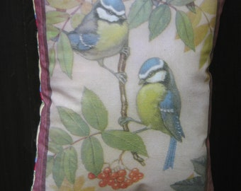 Blue Tit hanging pillow scanned from vintage childrens book
