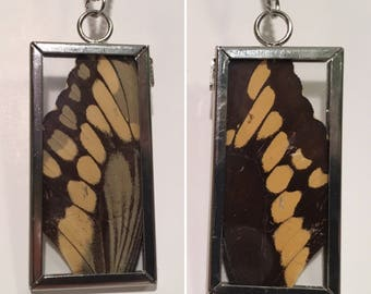 Butterfly Wing Window Necklace