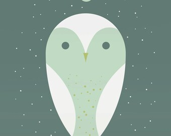 barn owl large limited edition print