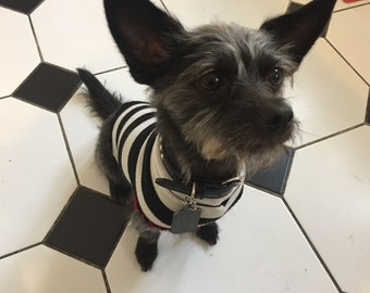 pet clothing. hand stitched. vintage. deconstructed. up cycling. stripes. t-shirt.