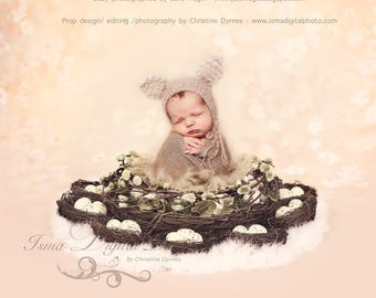 Digital Newborn  ( Easter Wreath With Eggs And Nests - Light Colors)  digital file