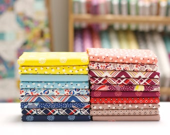 Ludlow - Half Yard Bundle by Denyse Schmidt - 19 prints