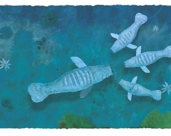 Illustration Manatees