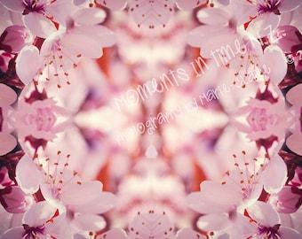 Blossom Overlay Texture