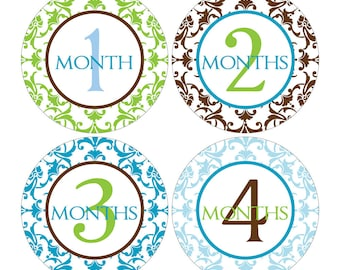 12 Monthly Baby Milestone Waterproof Glossy Stickers - Just Born - Newborn - Weekly stickers available - Design M007-05