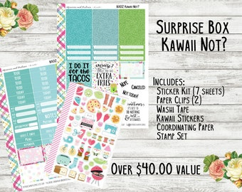 Planner Surprise Box - Kawaii Not - Planner Accessories - Planner Subscription Box - Erin Condren - Happy Planner - Mystery Box - Sub Box