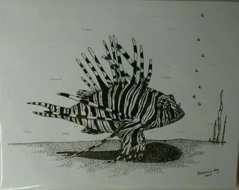 Zebra Fish Print Made From An Original Pen and Ink Drawing