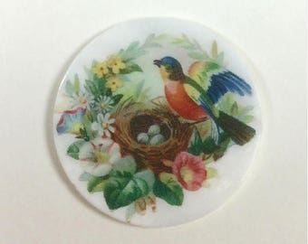 Mother of Pearl Button-Bird at the Nest