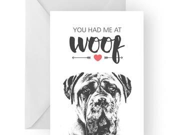 Bull Mastiff anniversary card- birthday card, love card, dog birthday card, Bull Mastiff anniversary, Mastiff card, Bull Mastiff card