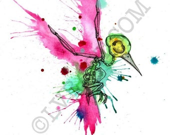 Hummingbird Skeleton Watercolor Fine Art Print