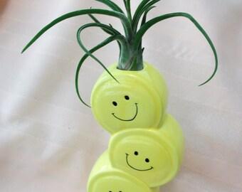 Happy Face Ceramic Vase Airplant Arrangement