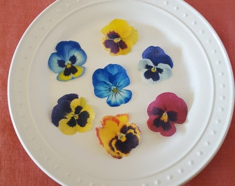 Edible Cake Decorations -  Pansy Cake, Cupcake & Cookie Toppers - Wafer Paper or Frosting Sheet