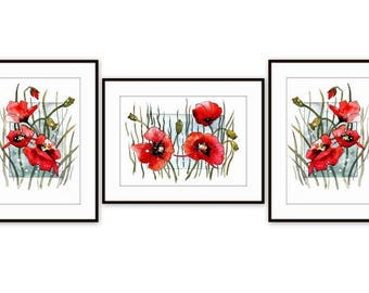 Red Poppy, Poppies, Red poppy Wall Art, Set of3 prints, Botanical Illustration, Poppy drawing, Floral Living Room Decor, Red home decor