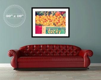 Lucky Ducks Photograph - 30x40 Large Wall Art - cute rubber ducks - carnival game - nursery room - home decor - summertime