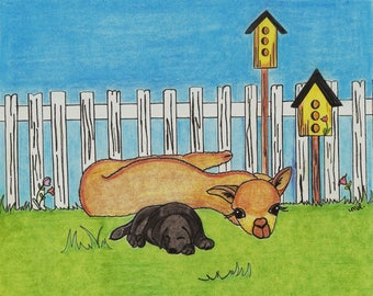 Alpaca Nap with Puppy/ Bird Houses Greeting Cards - Note Cards. Includes White Envelopes. Blank Inside.