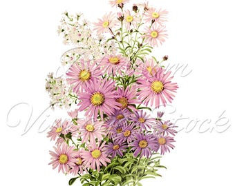 Floral wall decor, flower poster, home wall decoration, printable flower art, Flower print, daisies, downloadable wall art prints 2493