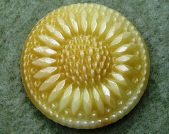 """Czech Glass Button 32mm - handpressed - """"ombre"""" beige (B32252)"""