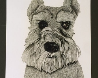 Dog Illustration, Schnauzer Portrait, ink Illustration Print, Schnauzer Print