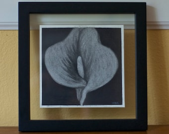 Calla Lily Charcoal Drawing