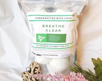 Natural Shower Steamer Eucalyptus 10 Pack, sinus shower bomb, get well gift for him, get well gift for husband, eucalyptus bath gift
