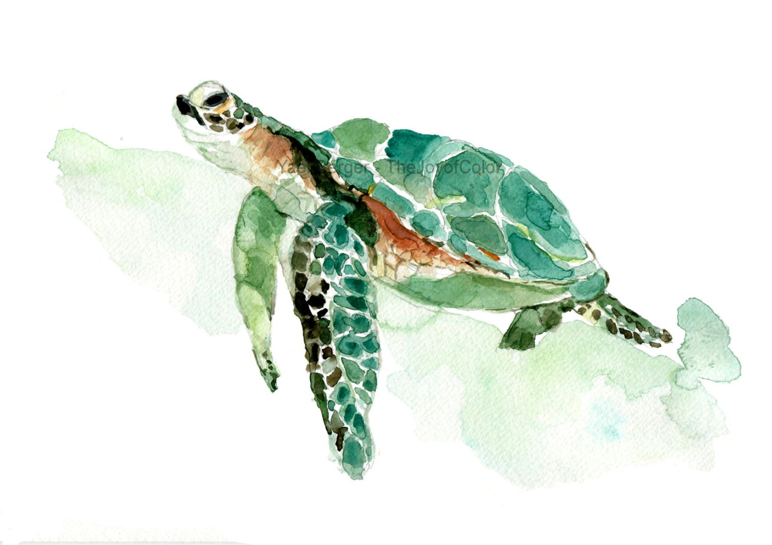 Juicy image intended for sea turtle printable