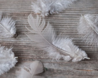 Light Grey Feathers 50pics Small Natural Fluffy Feathers Craft Feathers Boho Wedding Decorative Feathers Gray Costume Bouquet Feathers