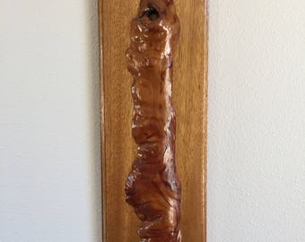 Mounted-Sliced Section of Tree Wall Art