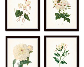 Redoute White Botanicals Print Set No. 2, Giclee, Art Prints, Antique Botanical Prints, Wall Art, Prints, Rose, Peony, White Flower Prints
