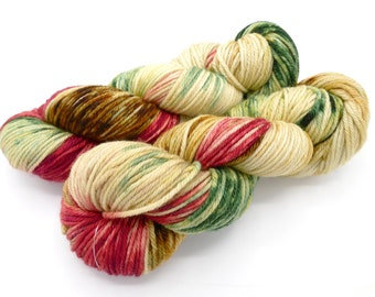 The Night Before Christmas Merino Worsted Hand Dyed Yarn - In Stock
