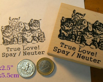 Q4 Help awareness for cats, rubber stamp.