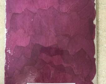 Purple Bougainvillea 100 Flowers