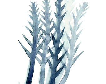 Indigo Blue Seaweed Watercolour, Seaweed Illustration, Coastal Living, Marine Wall Art, Bathroom Decor