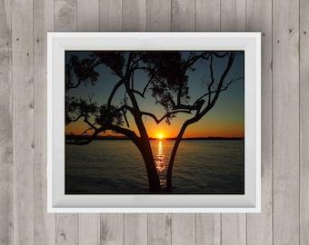 Sunset Tree Silhouette Sunset Photo Sunset Photography Landscape Photography Tree Photo Photography Art Digital Image Downloadable Print