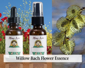 Willow Bach Flower Essence, Dropper or Spray for Renewed Optimism when Feeling Resentful, Bitter or in Misery, Release Negative Thinking