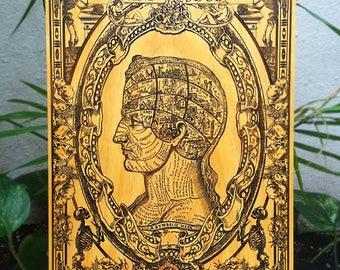 Symbolic Head - Vintage Anatomy, Medical Doctor Gift, Vintage Skull Anatomical Poster, Obscure Art, Office Decor Art, Doctor Gift for Doctor